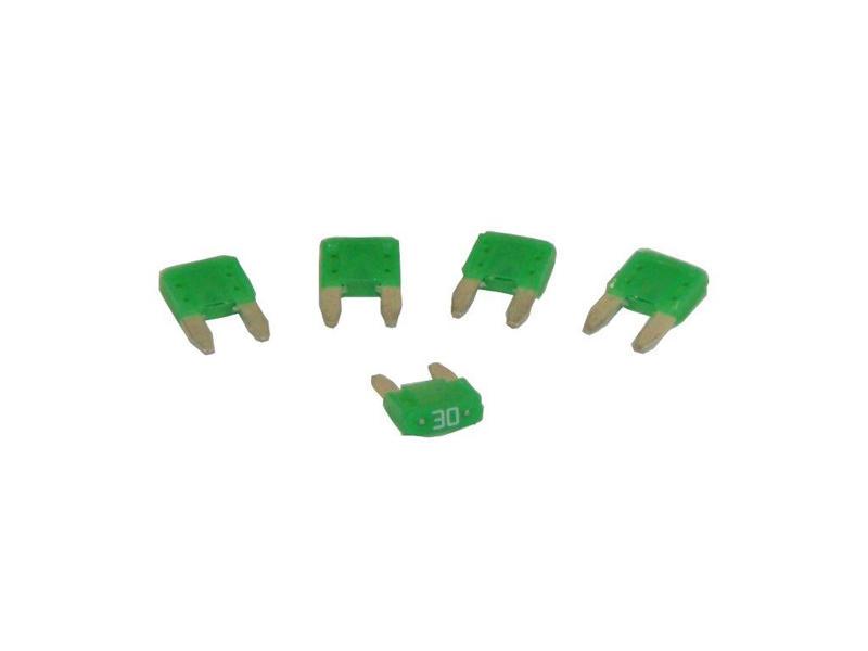 Mini Blade-Type Fuses - 30 Amp